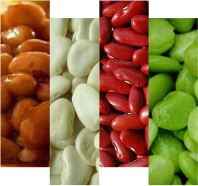 4-Bean Baked Beans Recipe — Dishmaps