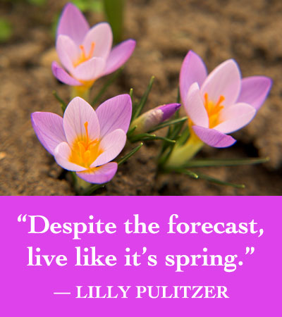 lilly pulitzer quote spring