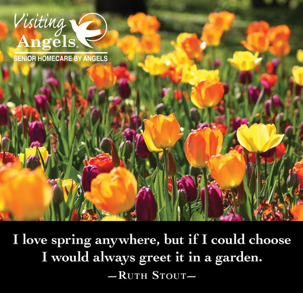 Spring greetings from visiting angels in new jersey visiting springtime arrives at our new jersey home health care offices m4hsunfo