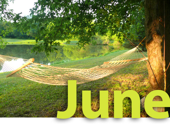 June image of hammock by peaceful lake