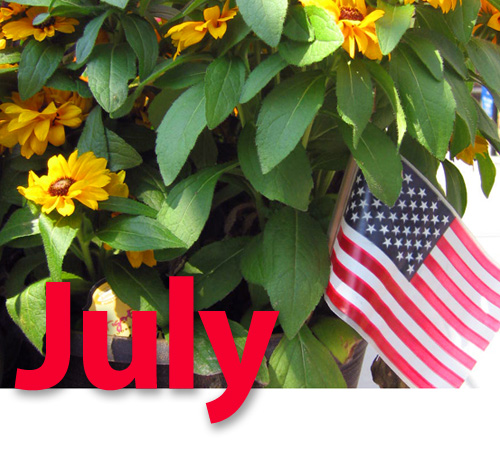 July Visiting Angels NJ Newsletter