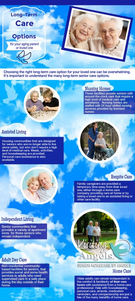 Long Term Care Options Infographic