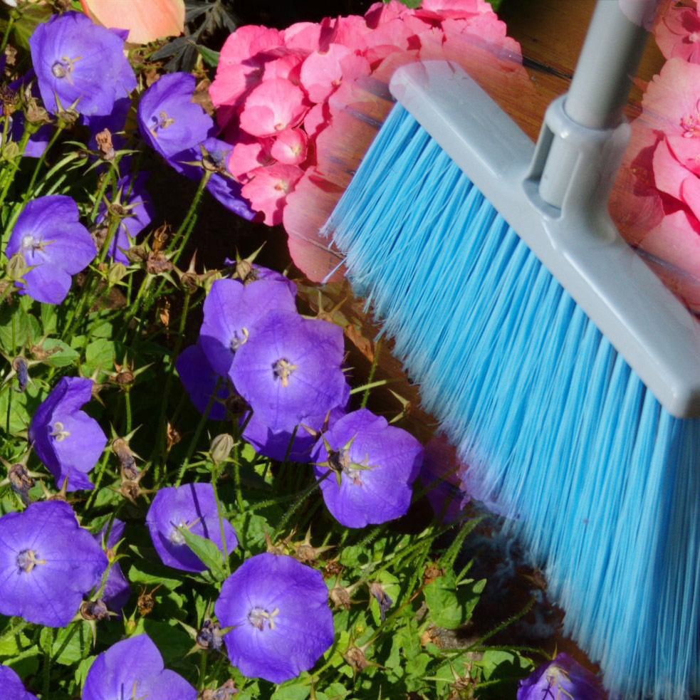 Welcome spring into your home New Jersey Senior Care