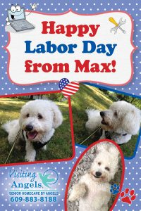 Happy Labor Day from Visiting Angels Office Mascot, Max